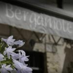 Bergamote, fleuriste à Périgueux en Dordogne